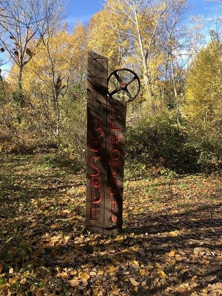 ruta por el bosque finlandes